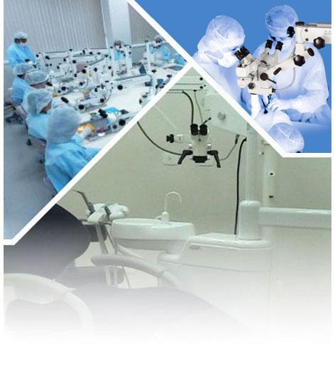Odontologia ou dentista